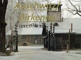 Auschwitz/ Birkenau