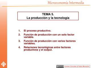 El proceso productivo. Función  de producción con un solo factor variable.