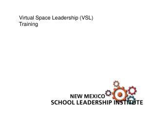 Virtual Space Leadership (VSL) Training