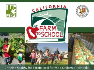Bringing healthy food from local farms to California's schools!