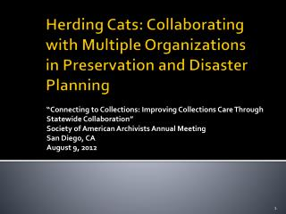 Herding Cats: Collaborating with Multiple Organizations in Preservation and Disaster Planning