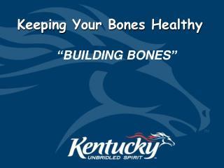 Building Bones