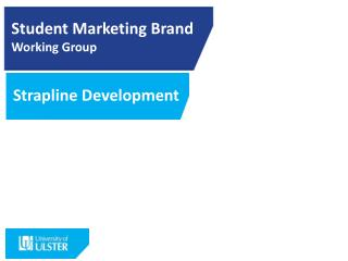 Student Marketing  Brand Working  Group