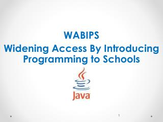 WABIPS  Widening Access By Introducing Programming to Schools