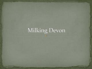 Milking Devon