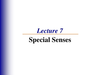 THE SPECIAL SENSES EYE  EAR