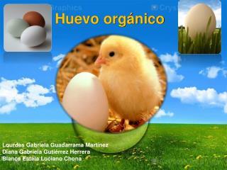 Huevo orgánico