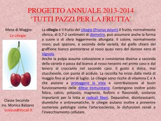 PROGETTO ANNUALE 2013-2014 'TUTTI PAZZI PER LA FRUTTA'