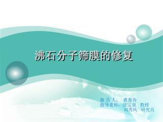 沸石分子筛膜的修复