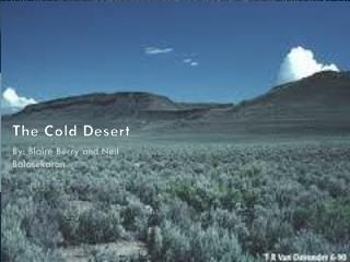 The Cold Desert