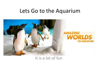 Lets Go to the Aquarium