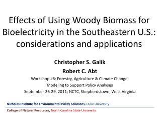 Christopher S. Galik Robert C. Abt Workshop #6: Forestry, Agriculture & Climate Change: