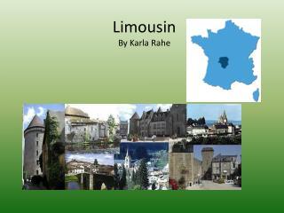 Limousin B y Karla  Rahe