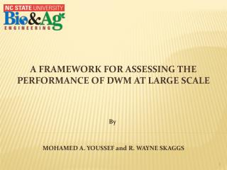 A Framework for assessing the performance of DWM at large Scale