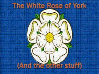 The White Rose of York
