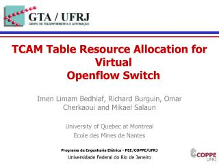 TCAM Table Resource Allocation for Virtual Openflow  Switch