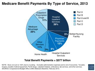 Medicare Benefit Payments By Type of Service, 2013