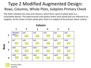 Type 2 Modified Augmented Design: Rows, Columns, Whole Plots, Subplots Primary Check