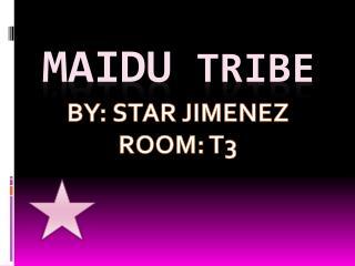 Maidu  tribe