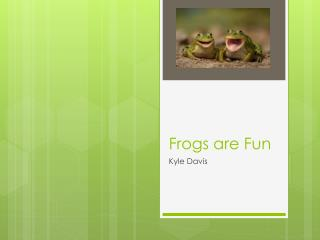 Frogs are Fun