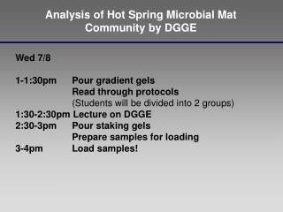 Analysis of Hot Spring Microbial Mat  Community by DGGE