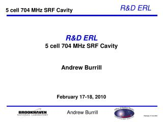R&D ERL 5 cell 704 MHz SRF Cavity