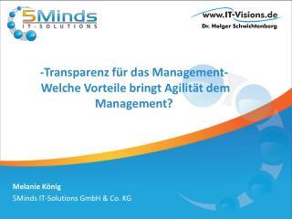 - Transparenz für  das Management- Welche Vorteile bringt Agilität dem  Management?