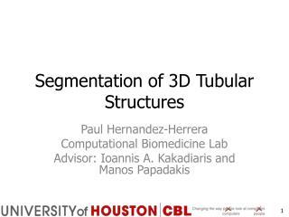 Segmentation of 3D Tubular Structures