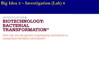 Big Idea 3 – Investigation (Lab) 8