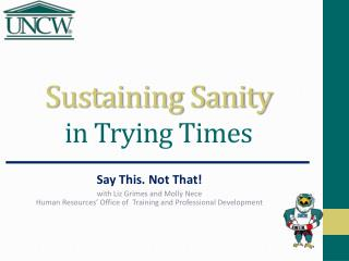 Sustaining Sanity  in Trying Times