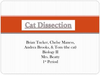 Brian Tucker,  Chelse  Maness, Andrea Brooks, & Tom (the cat)  Biology II Mrs. Beatty 1 st  Period