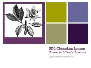 UDL  Chocolate Lesson  Consumer & Family Sciences