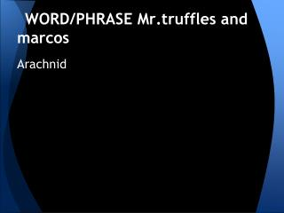 WORD/PHRASE  Mr.truffles and  marcos