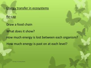 Energy transfer in ecosystems Re-cap