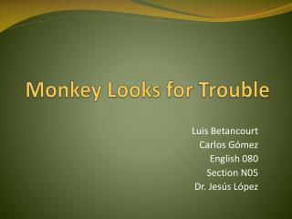 Monkey Looks for Trouble