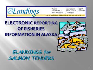 Electronic  Reporting of fisheries information in Alaska  elandings  for  Salmon tenders