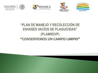 �PLAN DE MANEJO Y RECOLECCI�N DE ENVASES VAC�OS DE PLAGUICIDAS�  (PLAMREVP)