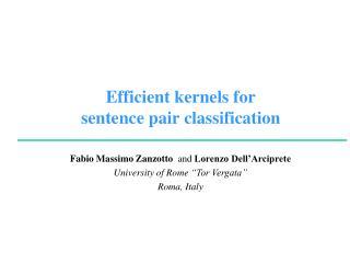 Efficient  kernels  for  sentence pair classification