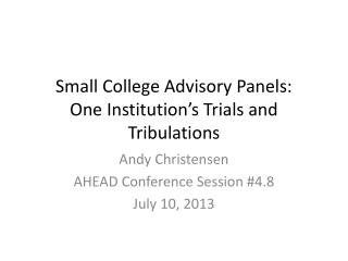 Small College Advisory Panels: One Institution's Trials and Tribulations
