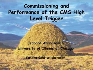 Commissioning and Performance of the CMS High Level Trigger