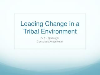 Leading Change in a Tribal Environment