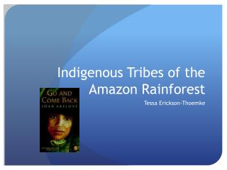 Indigenous Tribes of the Amazon Rainforest