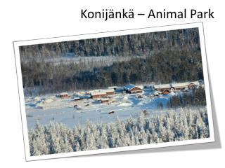 Konijänkä –  Animal Park