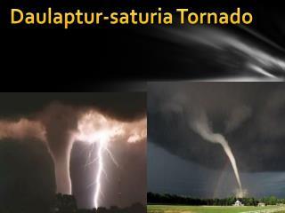 Daulaptur-saturia Tornado