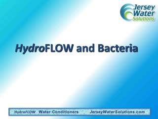 Hydro FLOW  and Bacteria