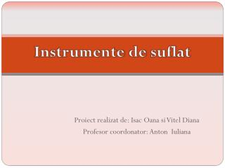 Proiect realizat  de:  Isac Oana si Vitel  Diana Profesor coordonator : Anton   Iuliana