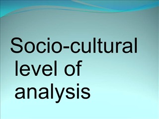 Socio-cultural level of analysis