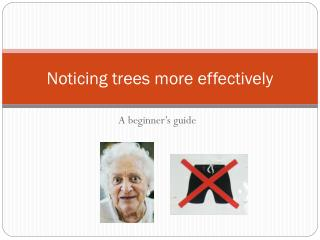 Noticing trees more effectively