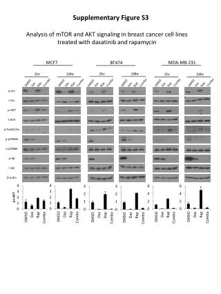 Supplementary  Figure S3