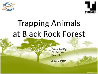 Trapping Animals  at Black Rock Forest
